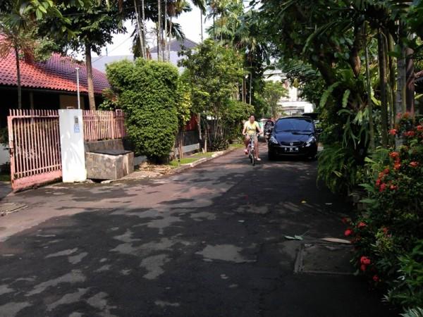 IMAG3537